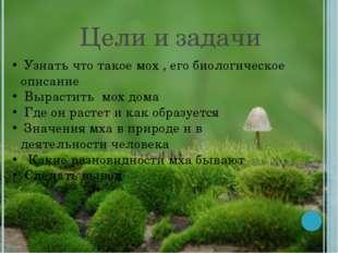 Цели и задачи Узнать что такое мох , его биологическое описание Вырастить мох