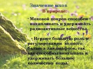 Значение мхов В природе: Моховой покров способен накапливать и удерживать ра