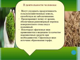 В деятельности человека: Могут ухудшать продуктивность сельскохозяйственных з