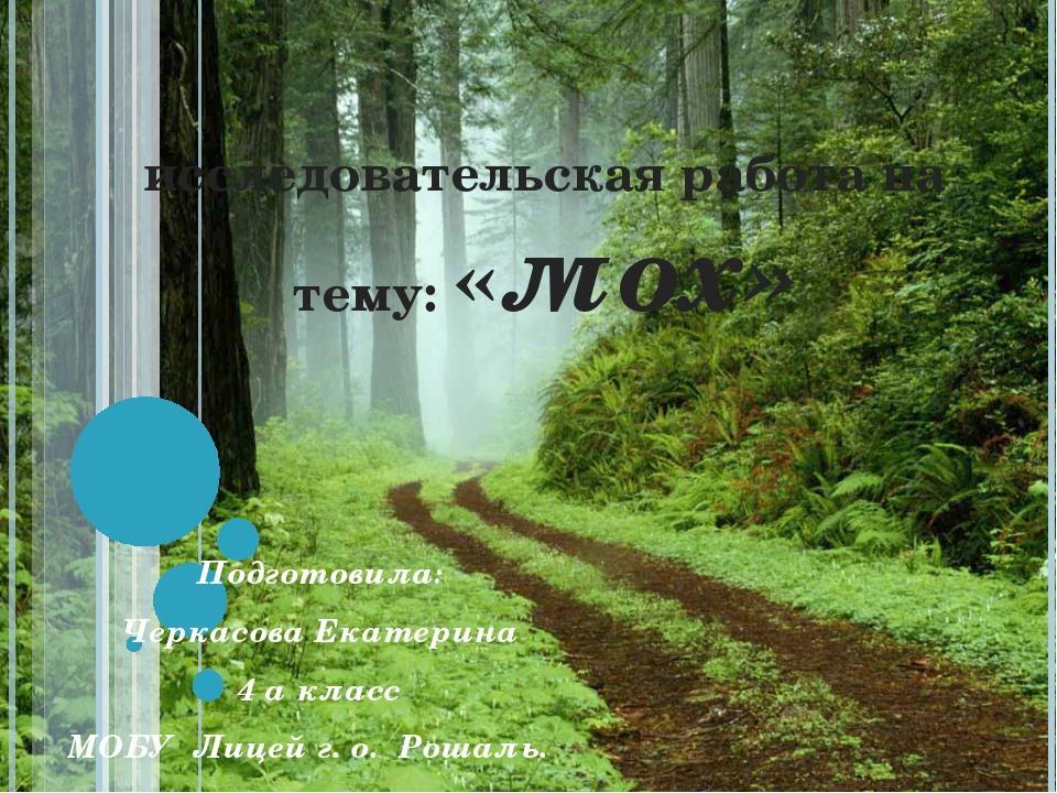 исследовательская работа на тему: «мох» Подготовила: Черкасова Екатерина 4 а...