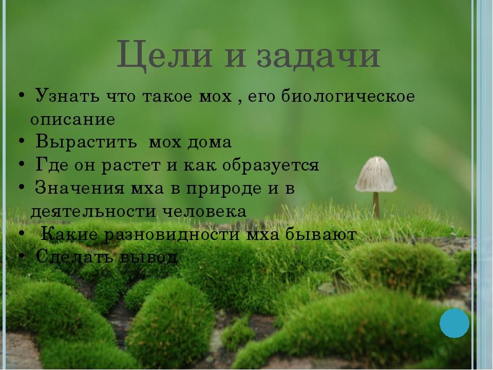 Цели и задачи Узнать что такое мох , его биологическое описание Вырастить мох...