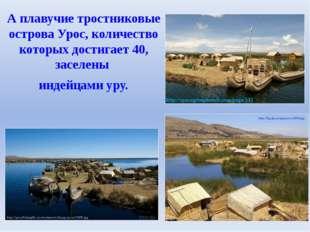 А плавучие тростниковые острова Урос, количество которых достигает 40, заселе