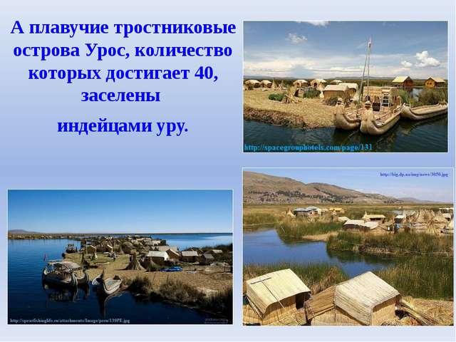 А плавучие тростниковые острова Урос, количество которых достигает 40, заселе...