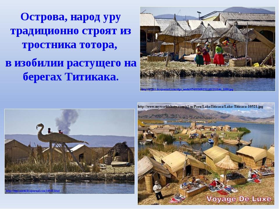 Острова, народ уру традиционно строят из тростникатотора, в изобилии растуще...