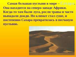 Самая большая пустыня в мире – Сахара. Она находится на северо-западе Африки