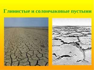 Глинистые и солончаковые пустыни