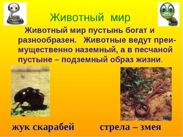 Животный мир Животный мир пустынь богат и разнообразен. Животные ведут преи-м...