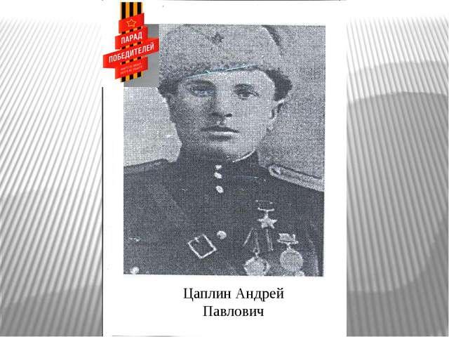 Цаплин Андрей Павлович