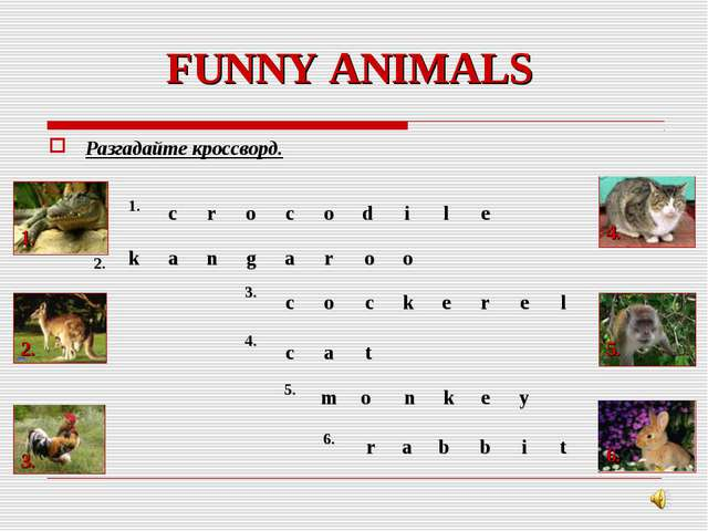 FUNNY ANIMALS Разгадайте кроссворд. 1. 3. 2. 4. 5. 6. 2. 1....