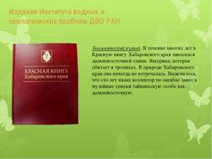 Издание Института водных и экологических проблем ДВО РАН Зоологический курьез