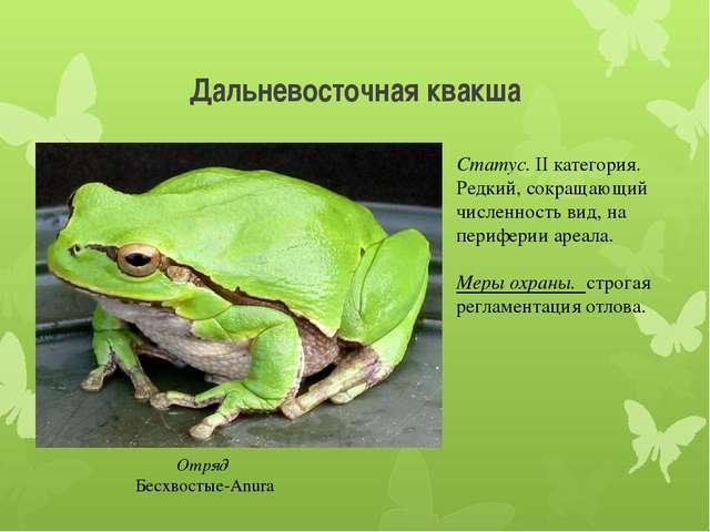 Дальневосточная квакша Отряд Бесхвостые-Anura Статус. II категория. Редкий, с...