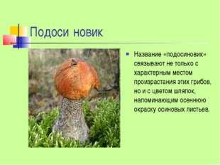 Подоси́новик Название «подосиновик» связывают не только с характерным местом