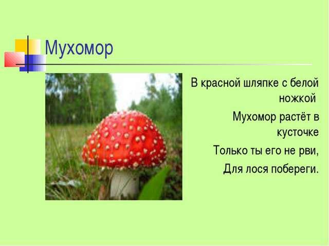 Мухомор В красной шляпке с белой ножкой Мухомор растёт в кусточке Только ты е...