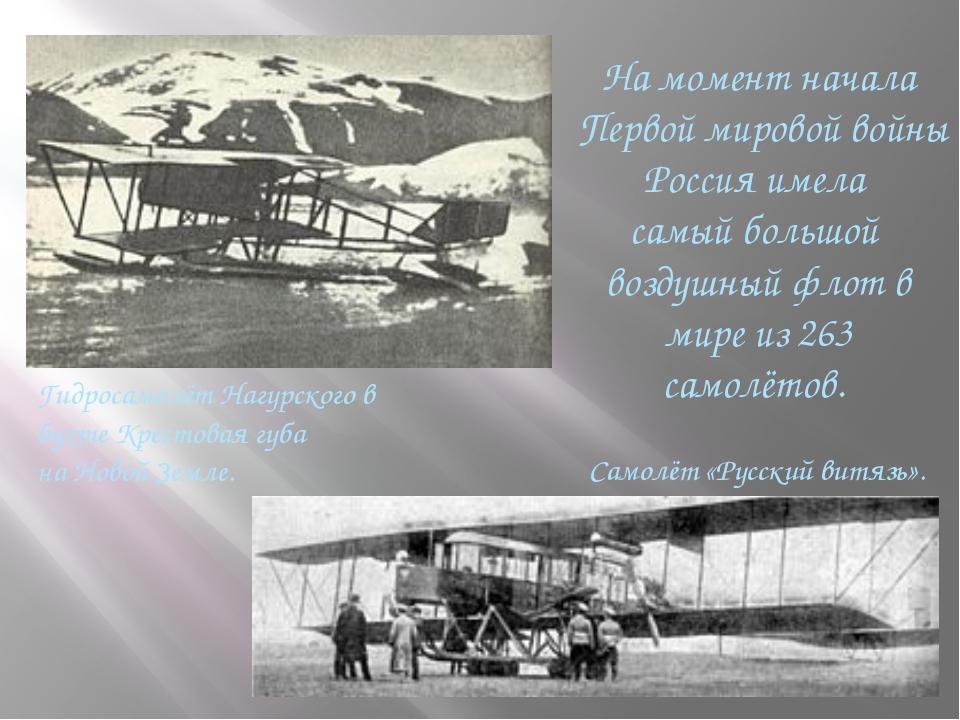 На момент начала Первой мировой войны Россия имела самый большой воздушный ф...