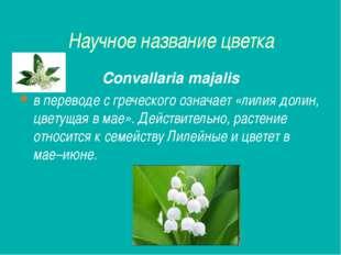 Научное название цветка Convallaria majalis в переводе с греческого означает