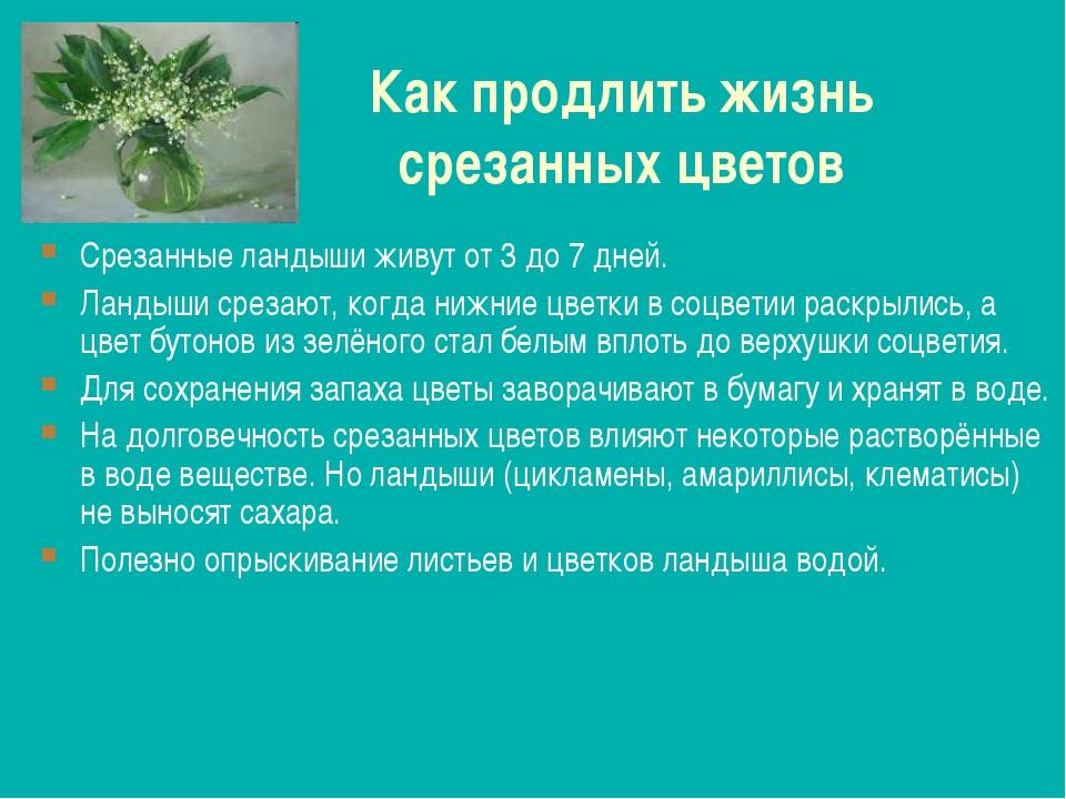 Как продлить жизнь срезанных цветов Срезанные ландыши живут от 3 до 7 дней. Л...