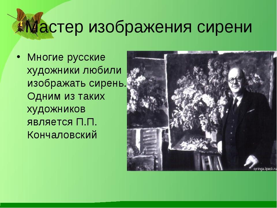 Мастер изображения сирени Многие русские художники любили изображать сирень....