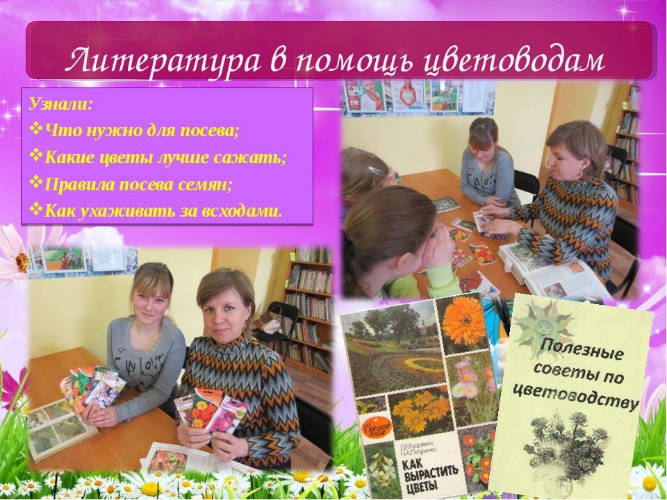 Узнали: Что нужно для посева; Какие цветы лучше сажать; Правила посева семян;...