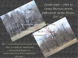 Синяя гора – одна из самых высоких точек равнинной части России (293 м). Это