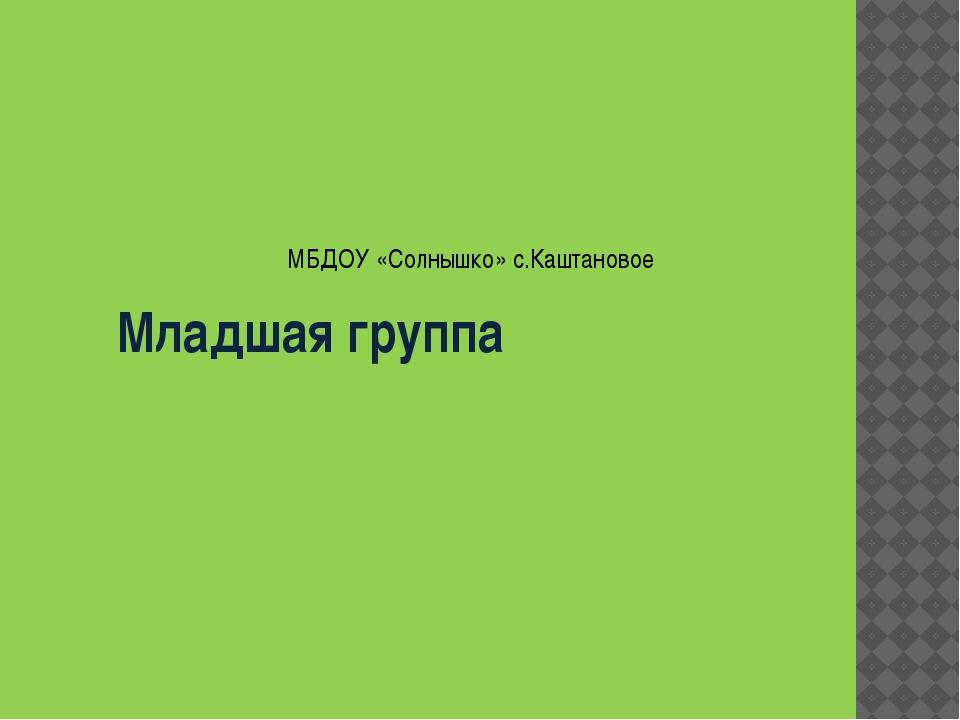 Младшая группа МБДОУ «Солнышко» с.Каштановое