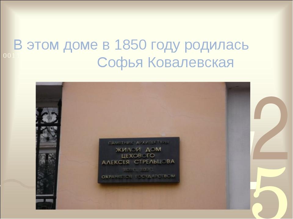 В этом доме в 1850 году родилась Софья Ковалевская