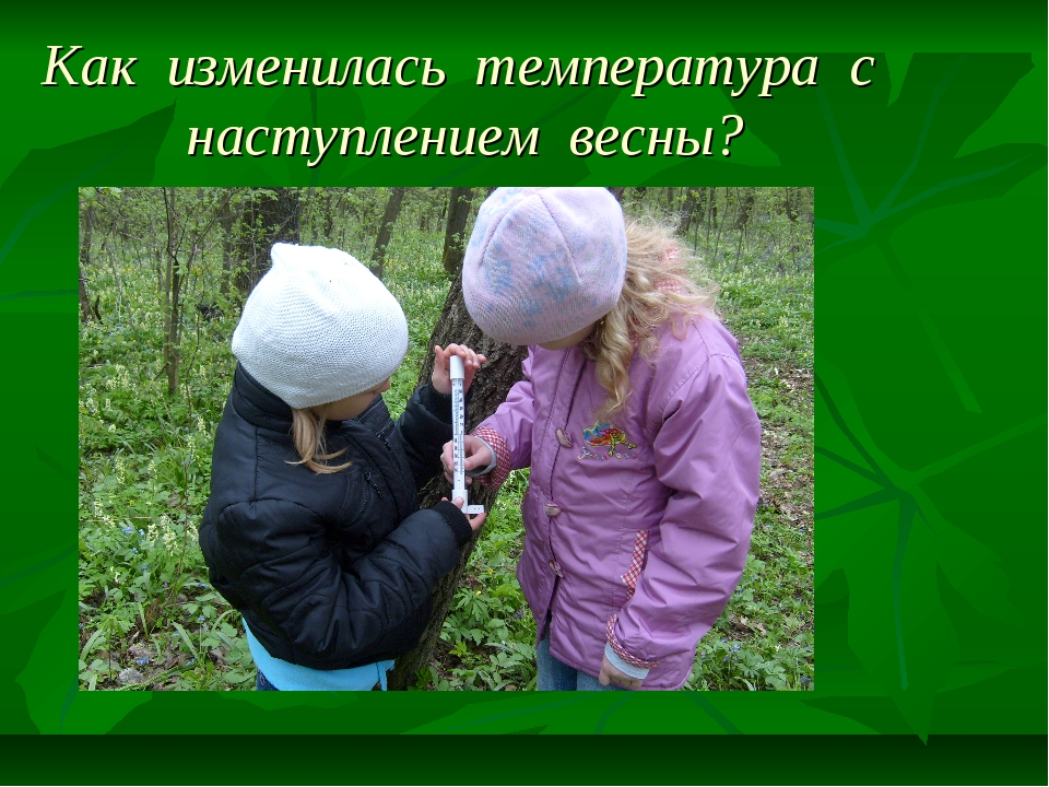 Как изменилась температура с наступлением весны?