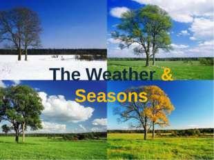 The Weather & Seasons