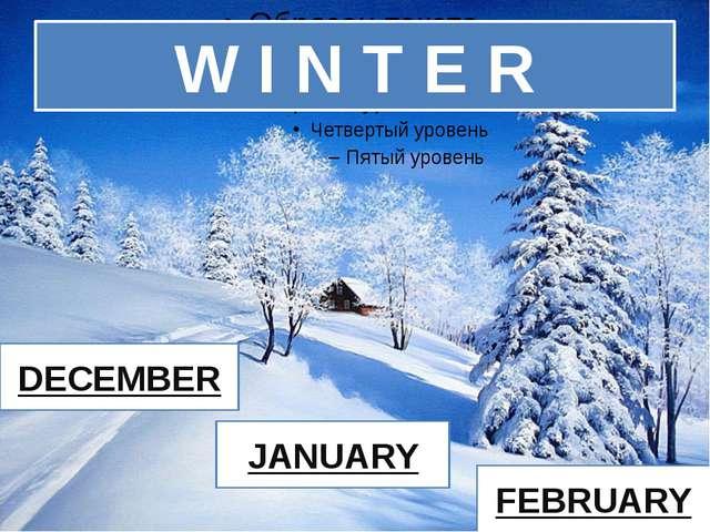 W I N T E R DECEMBER JANUARY FEBRUARY