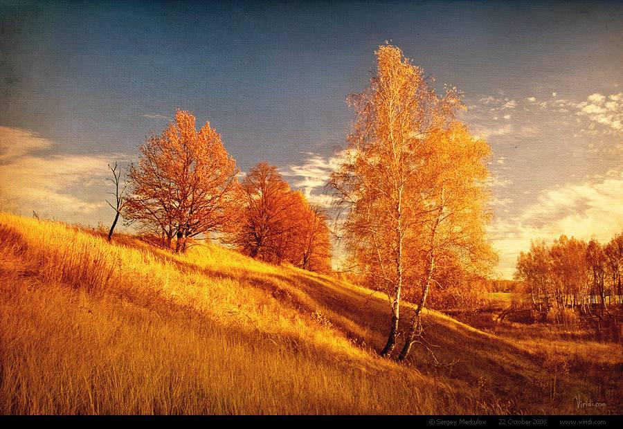 Золотая осень, осень, природа, фото