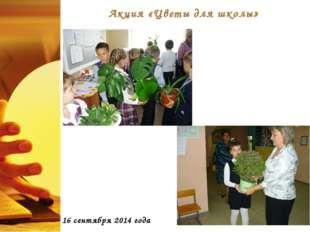Акция «Цветы для школы» 16 сентября 2014 года