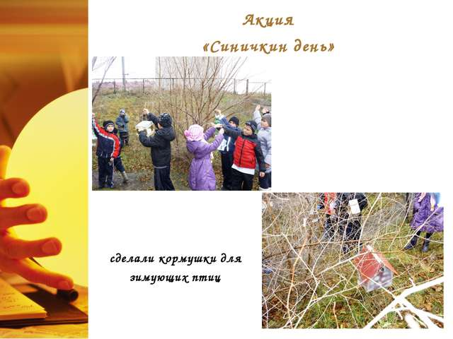 Акция «Синичкин день» сделали кормушки для зимующих птиц