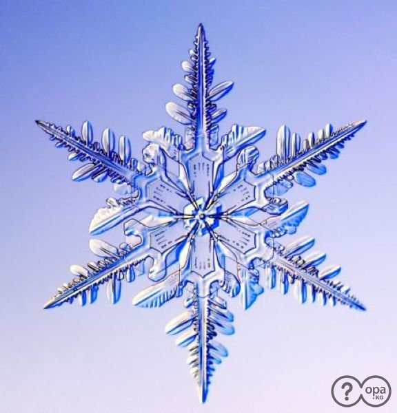 http://opa.kg/uploads/posts/2013-01/1357321248_1357299746_1356718626_snowflakes_08.jpg