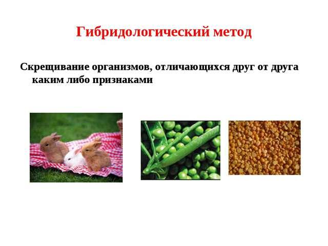 Гибридологический метод Скрещивание организмов, отличающихся друг от друга ка...