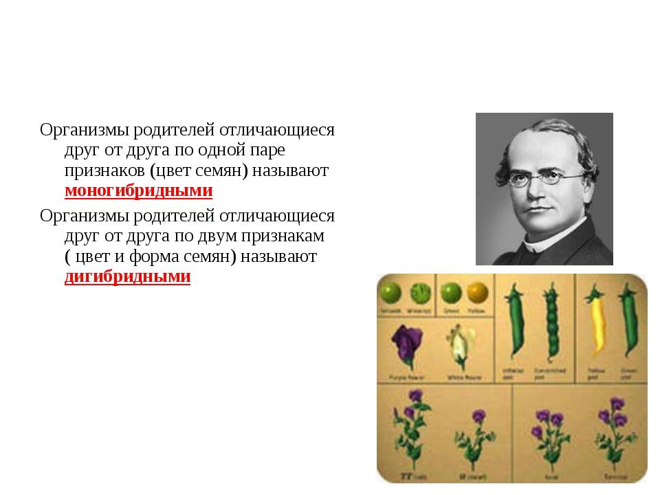 Организмы родителей отличающиеся друг от друга по одной паре признаков (цвет...