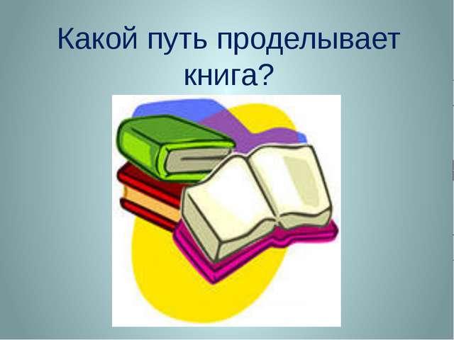 Какой путь проделывает книга?