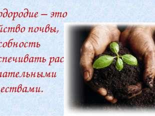 Плодородие – это свойство почвы, способность обеспечивать растения питательн