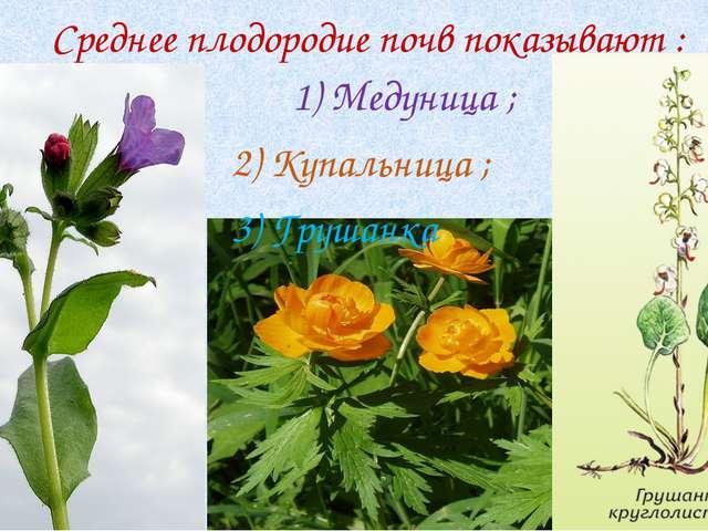Среднее плодородие почв показывают : 1) Медуница ; 2) Купальница ; 3) Грушанка