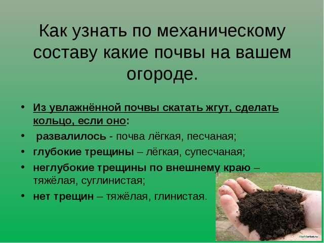 Как узнать по механическому составу какие почвы на вашем огороде. Из увлажнён...