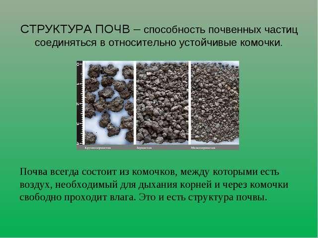 Почва всегда состоит из комочков, между которыми есть воздух, необходимый дл...