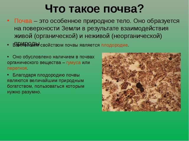 Что такое почва? Почва – это особенное природное тело. Оно образуется на пове...