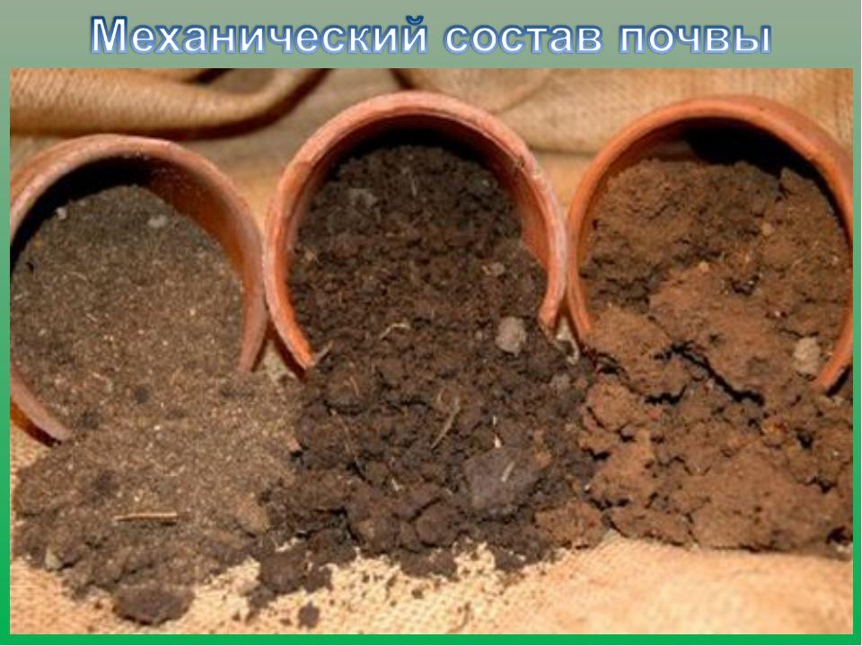 Как сделать плодородную почву из глинистой 82