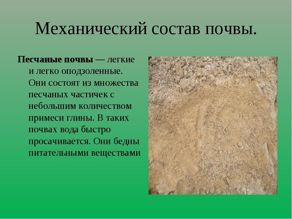 Механический состав почвы. Песчаные почвы — легкие и легко оподзоленные. Они...