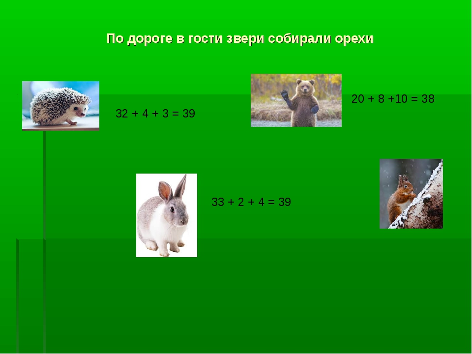По дороге в гости звери собирали орехи 32 + 4 + 3 = 39 33 + 2 + 4 = 39 20 + 8...