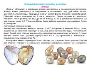 Кальций в океане: кораллы и жемчуг. Жемчуг Жемчуг образуется в раковинах невз