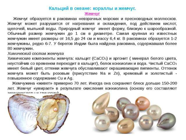 Кальций в океане: кораллы и жемчуг. Жемчуг Жемчуг образуется в раковинах невз...
