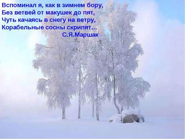 Вспоминал я, как в зимнем бору, Без ветвей от макушек до пят, Чуть качаясь в...