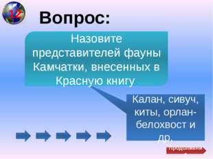 Вопрос: Карагинский Самый крупный остров у берегов Камчатки Продолжение 13
