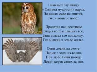 Называет эту птицу « Символ мудрости» народ, По ночам сове не спится, Тих в н