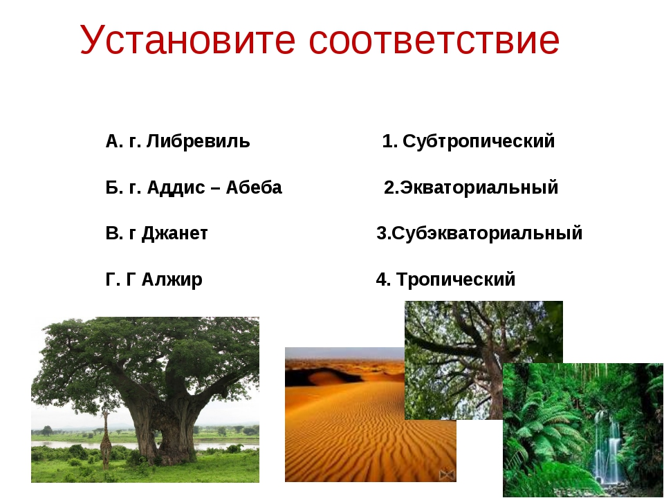 Установите соответствие А. г. Либревиль 1. Субтропический Б. г. Аддис – Абеба...