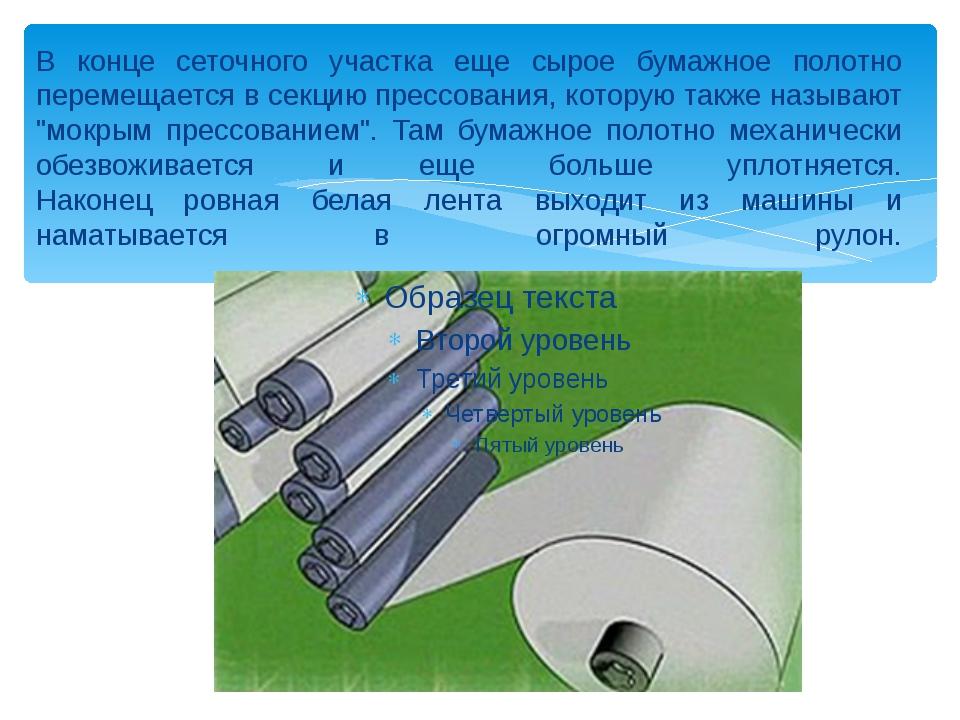 В конце сеточного участка еще сырое бумажное полотно перемещается в секцию пр...